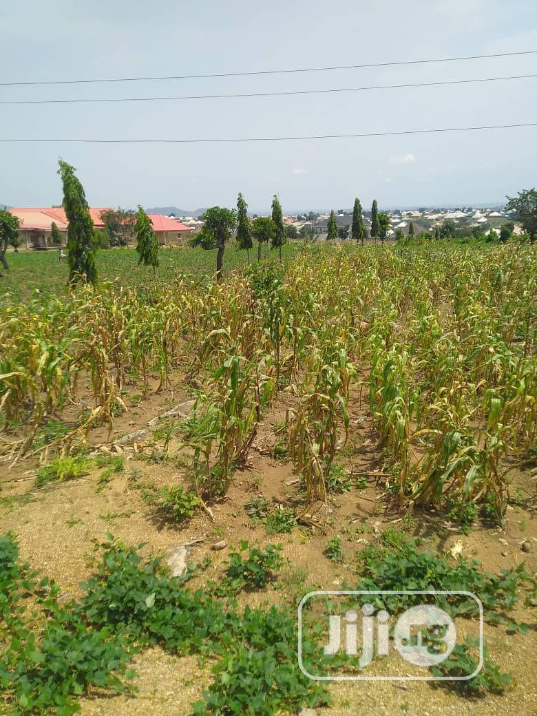 Two (2) Plots of Land With R of O for Urgent Sale