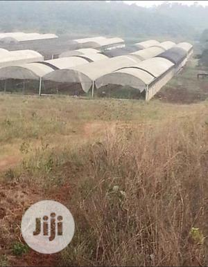 99 Acres Of Land With An Existing Greenhouse Farming   Land & Plots For Sale for sale in Ogun State, Sagamu