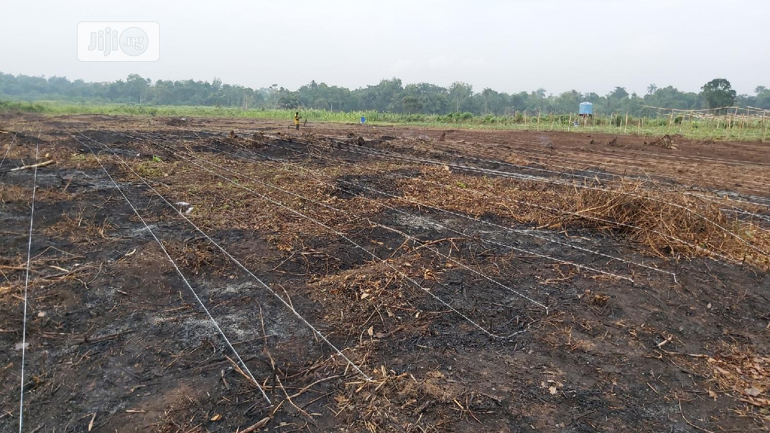 Archive: Agri Land For Lease