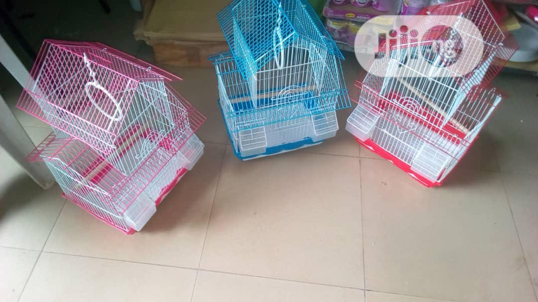 Foreign Cage For You Canary And Love Birds
