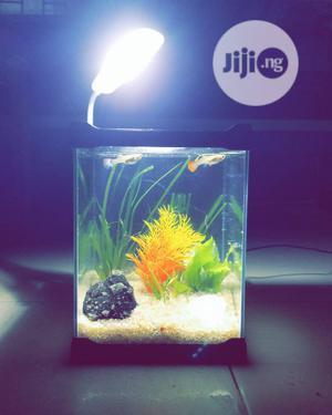 Acrylic Mini Aquarium For Sale   Fish for sale in Lagos State, Ikeja