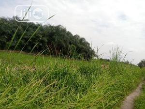 Residential Land Available For Sale | Land & Plots For Sale for sale in Amuwo-Odofin, Abule Ado