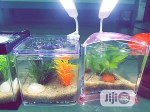 Mini Aquarium For Sale | Fish for sale in Lagos State, Ikeja