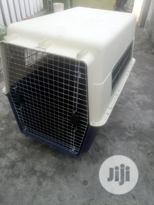 Dog Carrier XXL