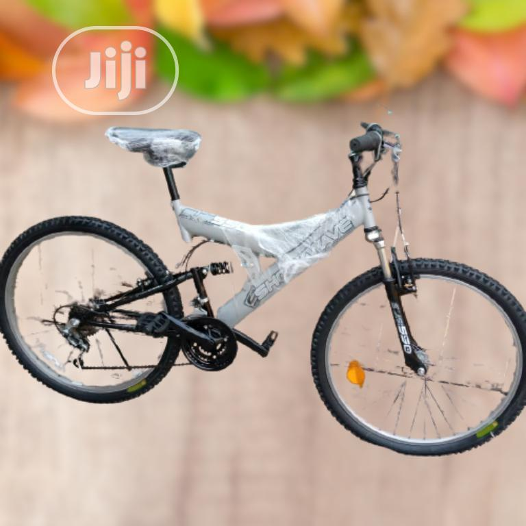 Adult Bicycles for Adult