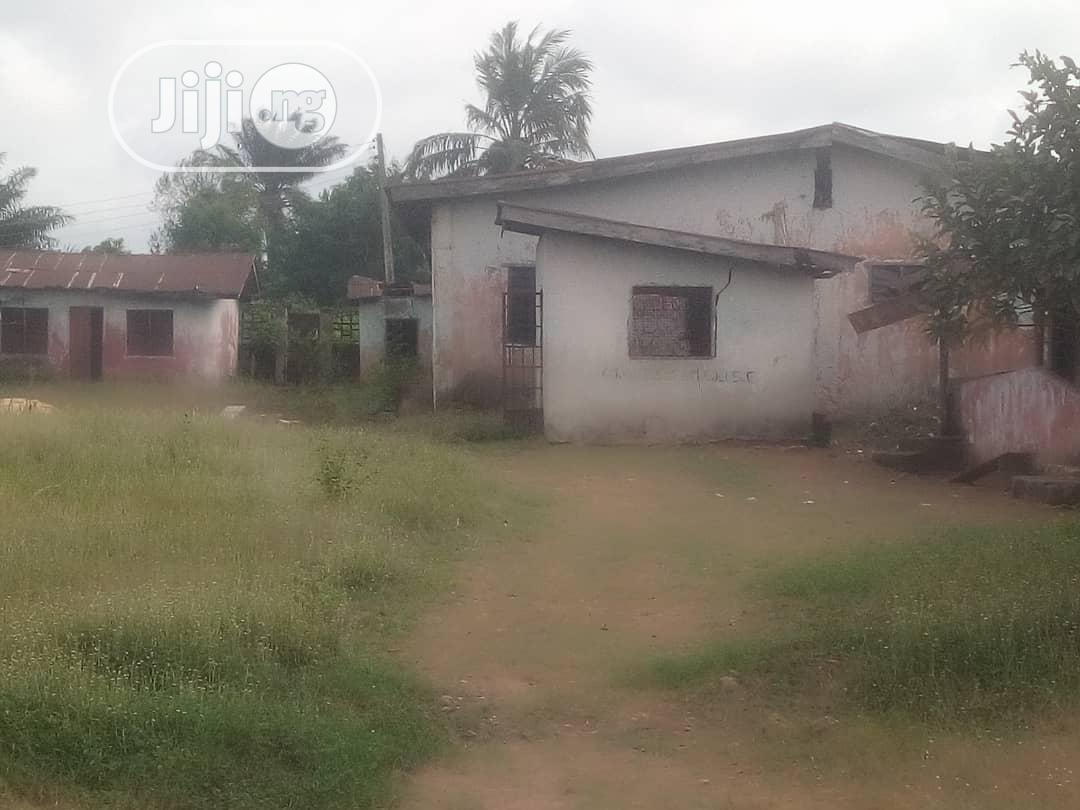 Archive: School for Sale in Benin City