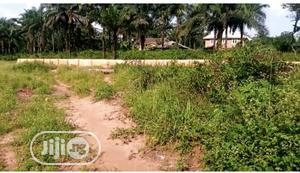 Introducing Max Gardens Estate Orlu Land For Sale In Imo   Land & Plots For Sale for sale in Imo State, Orlu