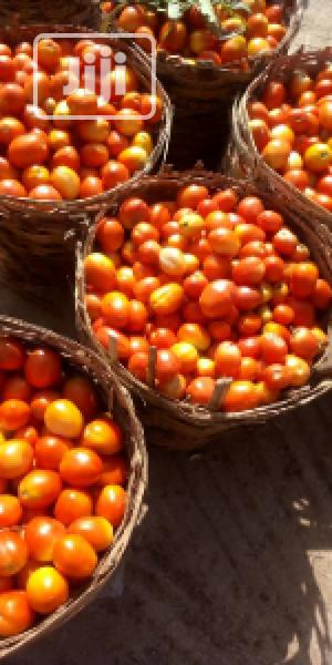 Fresh Derica Tomatoes(Medium Basket) | Meals & Drinks for sale in Abuja (FCT) State, Central Business Dis