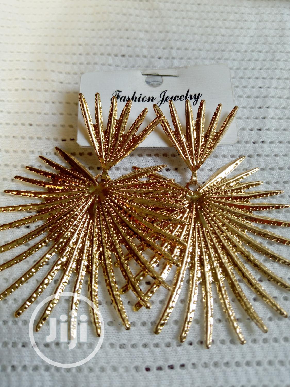 Archive: Stainless Steel Earrings