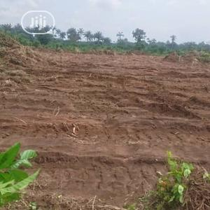 Land in Good Site and Appreciating Daily!! | Land & Plots For Sale for sale in Abia State, Aba North