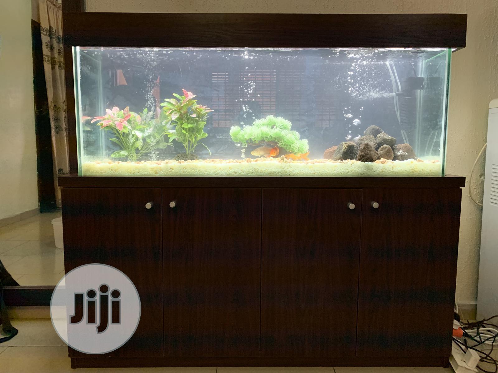 4ft Standing Aquarium