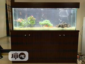 4ft Standing Aquarium | Fish for sale in Lagos State, Ikoyi