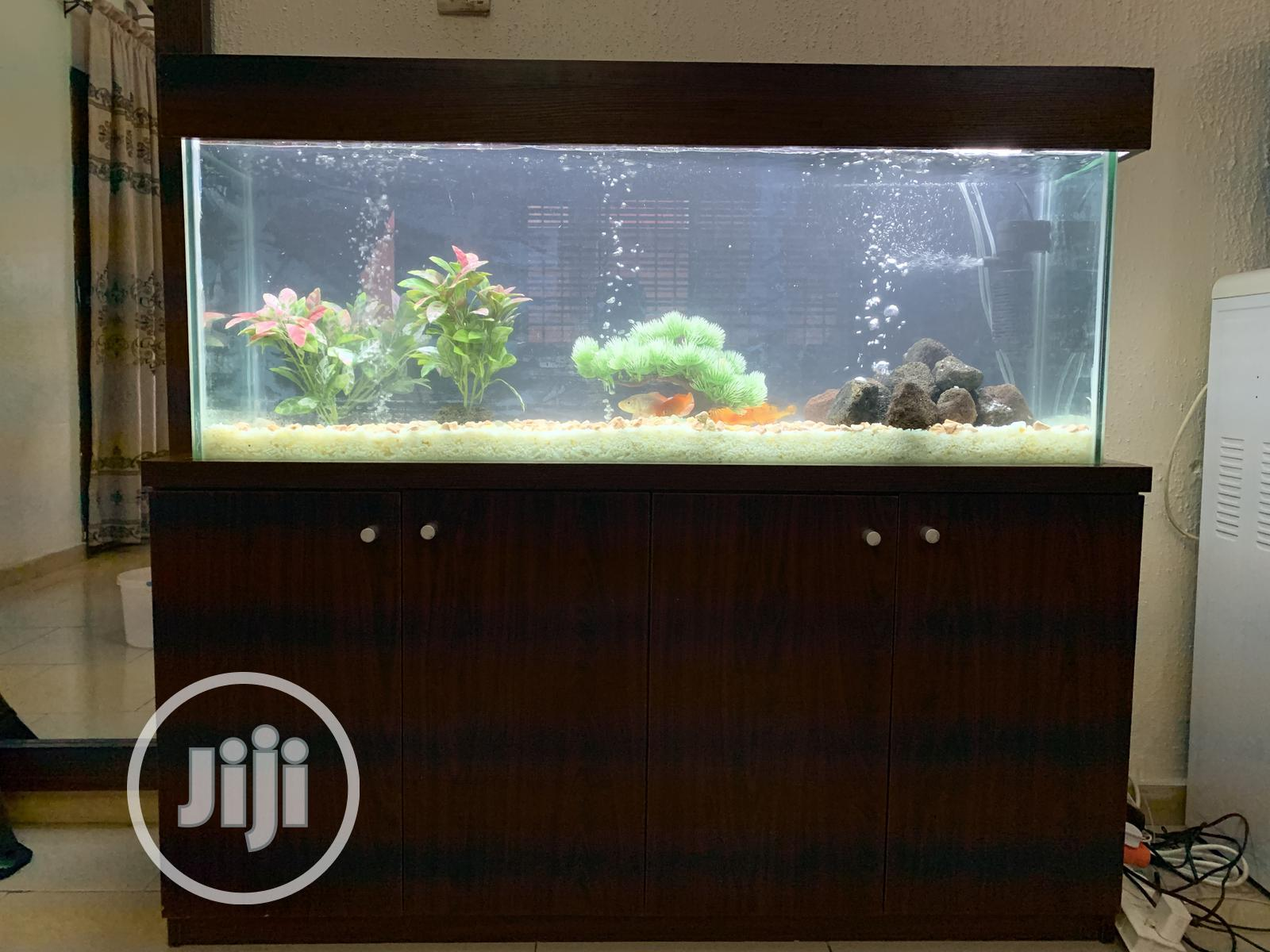 4ft Standing Aquarium   Fish for sale in Ikoyi, Lagos State, Nigeria