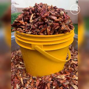 Dried Pepper And Grinded Pepoer   Meals & Drinks for sale in Lagos State, Ikorodu