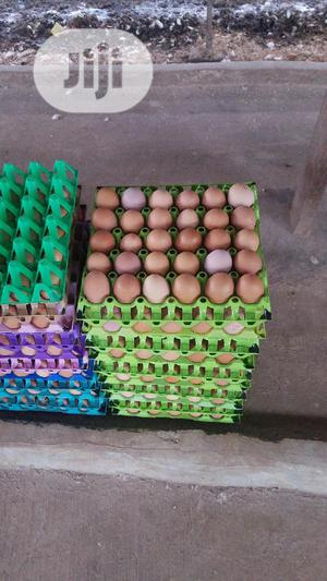Fresh Farm Eggs For Sale   Meals & Drinks for sale in Lagos State, Ipaja