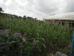 Full Plot for Sale . | Land & Plots For Sale for sale in Ogun State, Ado-Odo/Ota