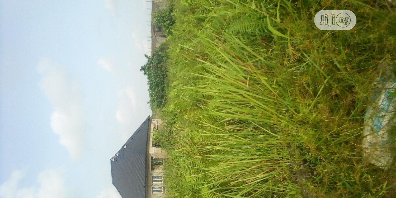 Land for Sale at Harmony Estate Iyanasashi Lagos | Land & Plots For Sale for sale in Okokomaiko, Ojo, Nigeria