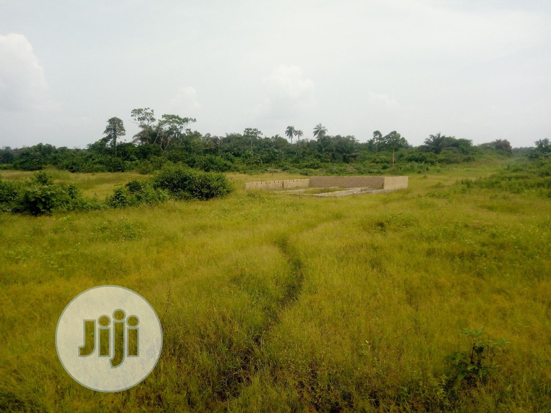 Archive: 100 Acres of Land at Oju Oto, Eleko, Ibeju Lekki