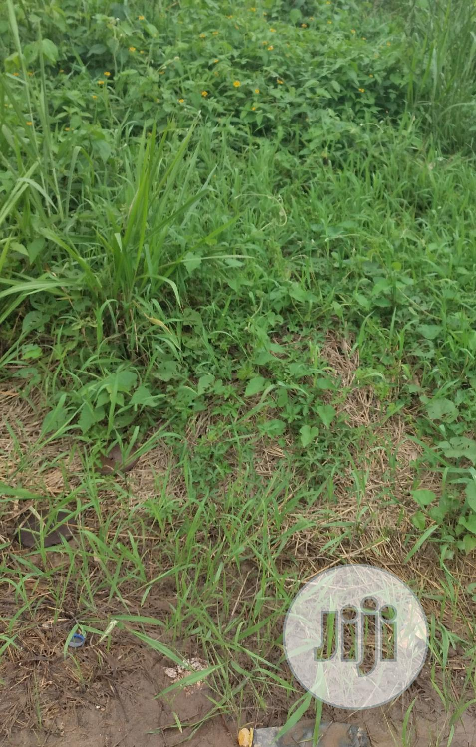 325sqm Land (Half Plot) for Sale at Harmony Estate Ogba