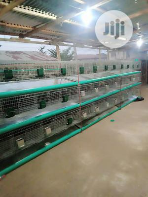 Rabbit Cage | Farm Machinery & Equipment for sale in Lagos State, Ikorodu