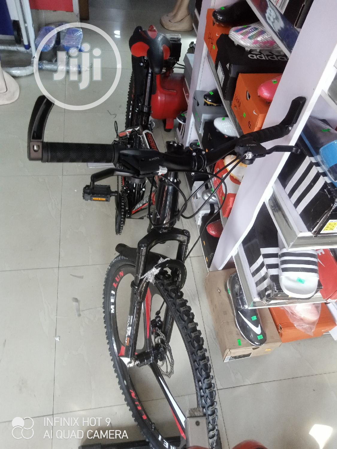 Archive: BICYCLE Sport