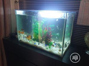 Aquarium (Fish Tank) | Fish for sale in Lagos State, Victoria Island