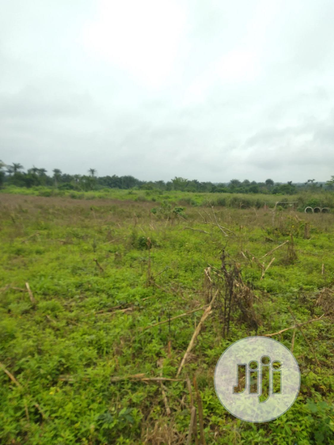 Farmland With Registered Survey For Sale
