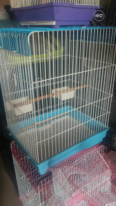 Parrot Bird Cage Medium