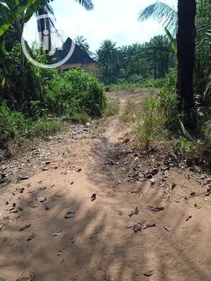 26 Plots Of Land For Sale At Umunze | Land & Plots For Sale for sale in Anambra State, Orumba