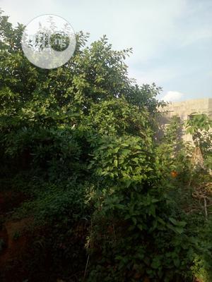 Land for Sale Inside Okoafo Along Badagry | Land & Plots For Sale for sale in Badagry, Oko Afo