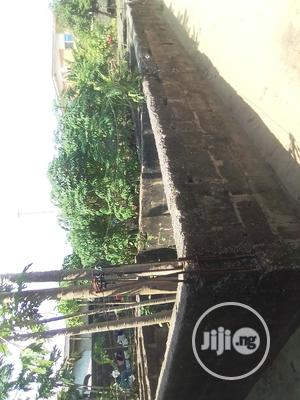 Dry Land For Sale With Registered Survey And Original Land Receipt | Land & Plots For Sale for sale in Ojo, Ajangbadi