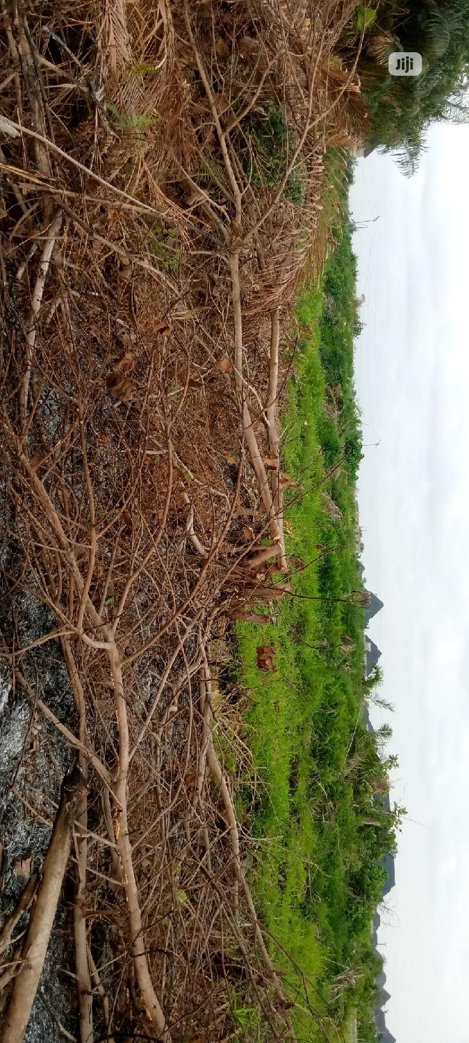 Archive: Residential Land Available For Sale