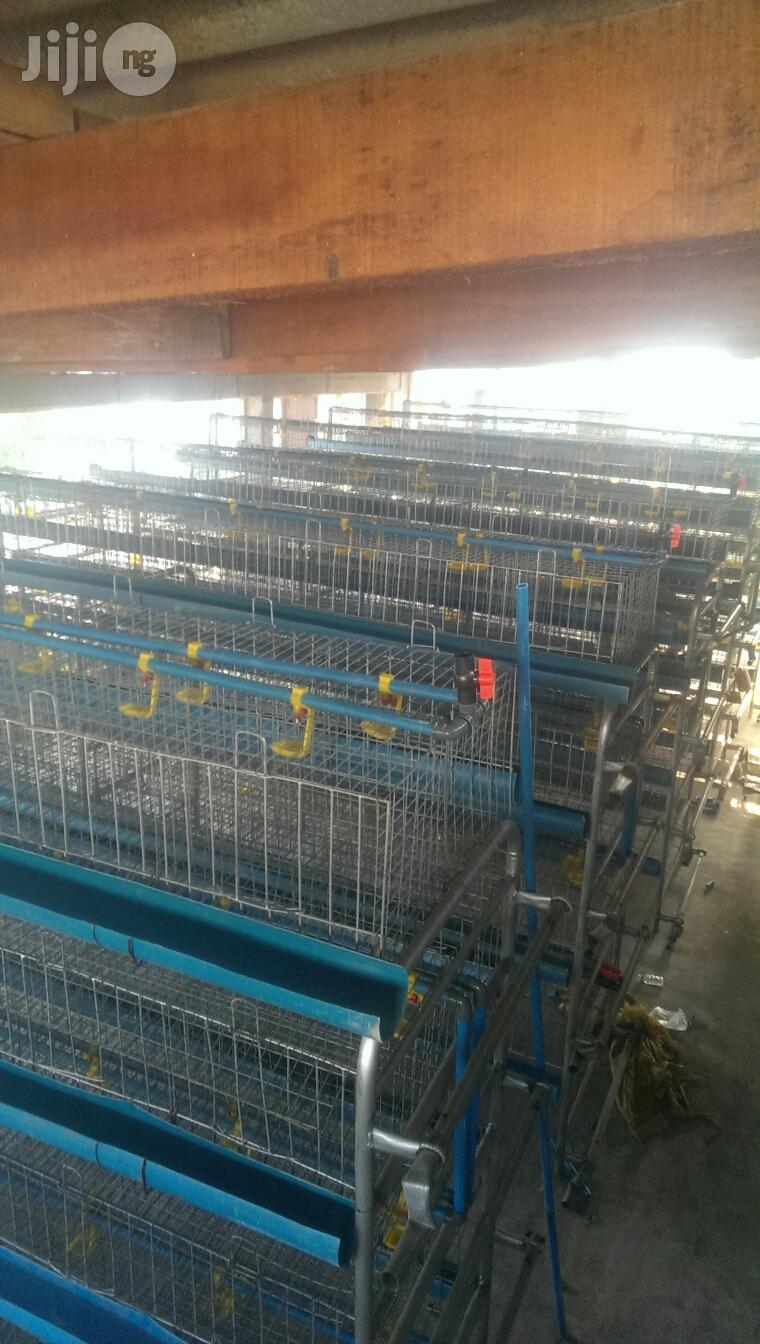 Dekoraj Semi Automatic H Type Battery Cage With Waste Deflector | Farm Machinery & Equipment for sale in Ojo, Lagos State, Nigeria