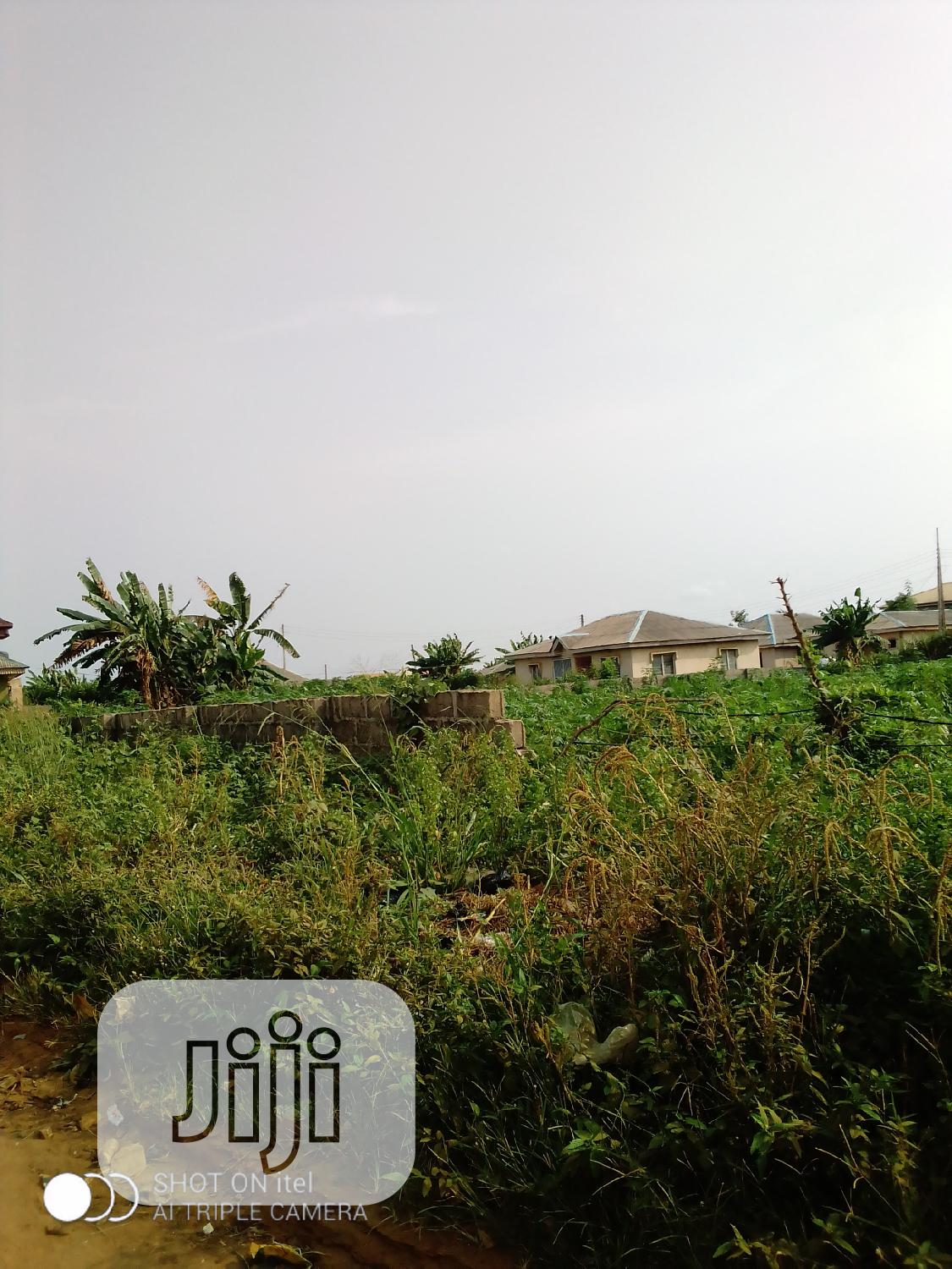 It Has Survey Paper and Family Deed and Receipt | Land & Plots For Sale for sale in Ijede / Ikorodu, Ikorodu, Nigeria