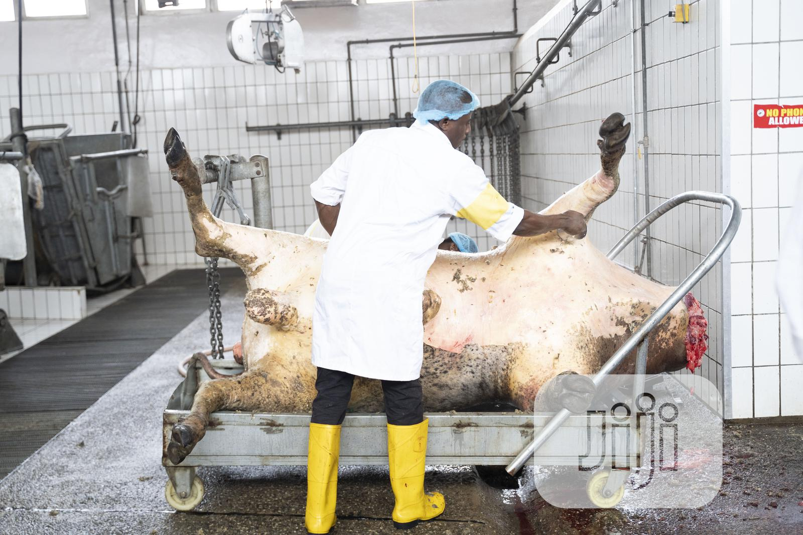 Archive: Healthy And Well Processed Cow Meat; Full Cow & Cow Sharing