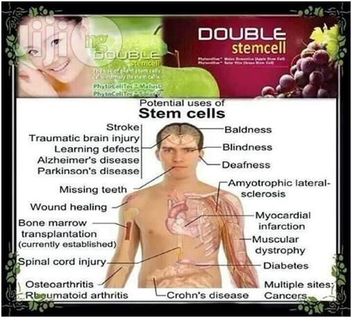 Archive: Double Stem Cell