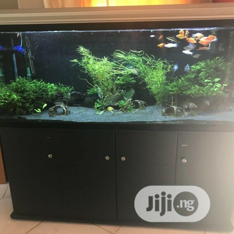 Massive Fish Tank Aquarium And Cabinets | Pet's Accessories for sale in Yaba, Lagos State, Nigeria