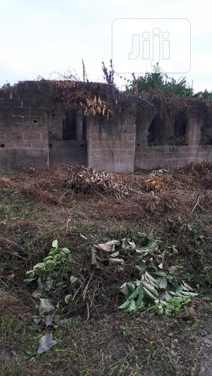 Serious Buyer Only   Commercial Property For Sale for sale in Ibadan, Akala Express