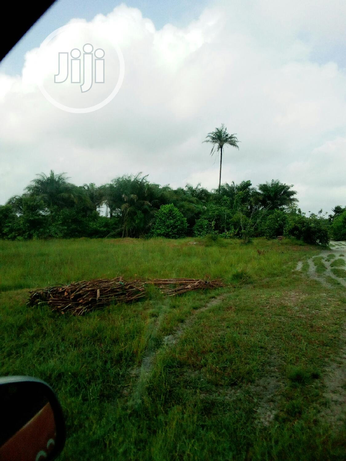Archive: Owerri Farmland,Imo State.It Has Deed of Assignment