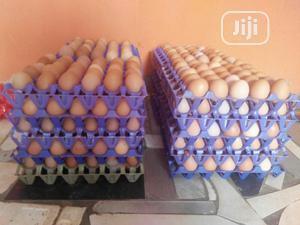Chicken Eggs   Meals & Drinks for sale in Lagos State, Ikorodu