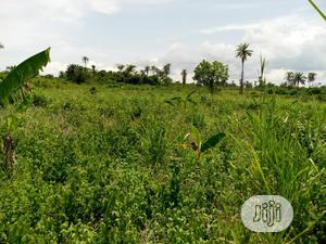 50 Hectares of Land for Sale Along Ogombo Road, Ajah, Lagos | Land & Plots For Sale for sale in Ajah, Ogombo