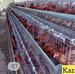 Authomatic Poultry Cage | Farm Machinery & Equipment for sale in Lagos State, Lagos Island (Eko)