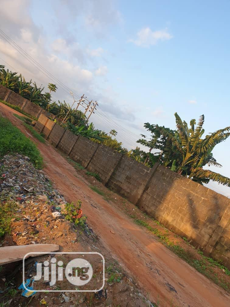 2 Plots of Land for Hire/Lease