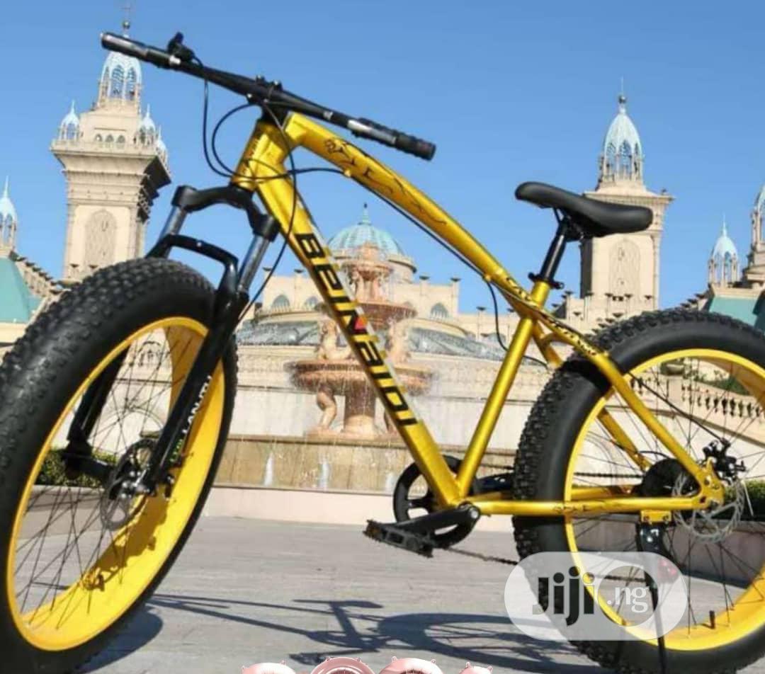 Big Tyre Bicycle