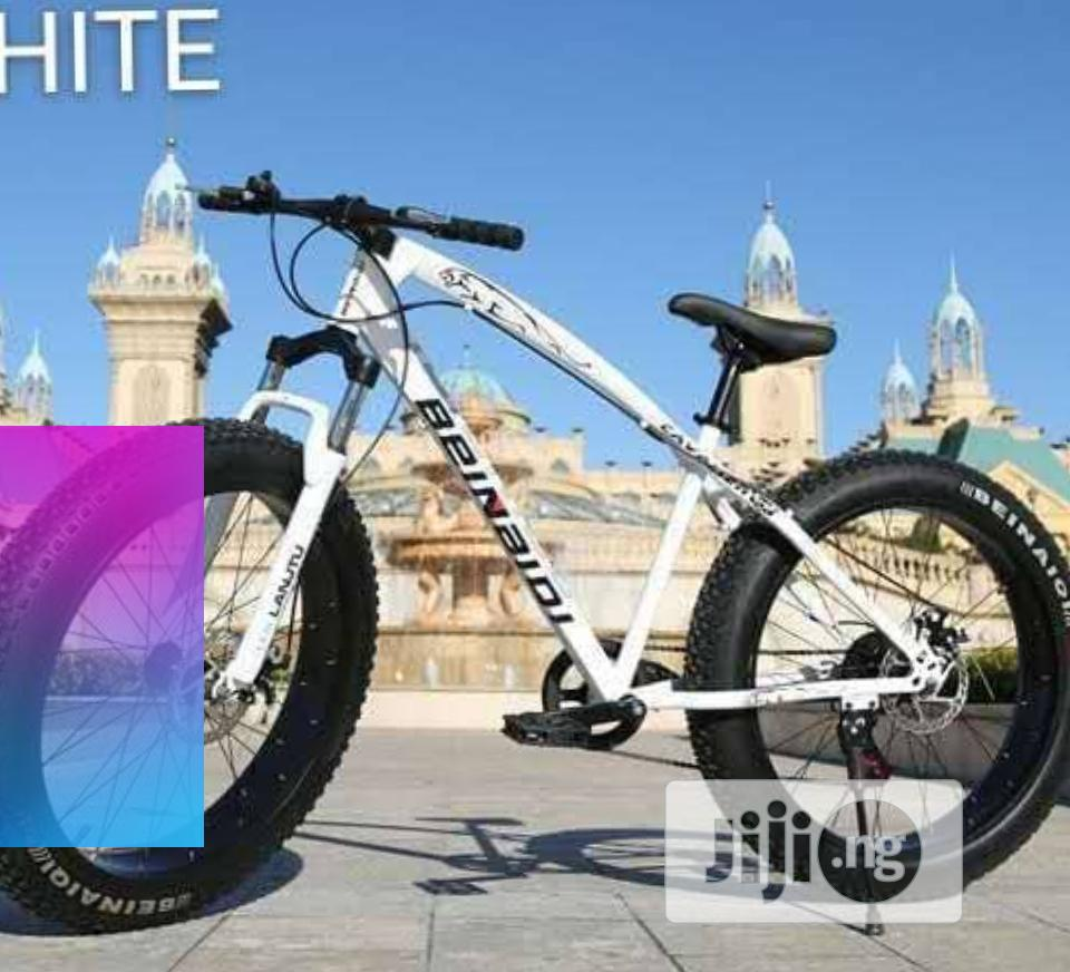 Archive: Power Bicycle