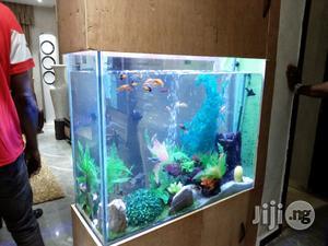 Bespoke Aquarium Construction   Fish for sale in Lagos State, Ajah