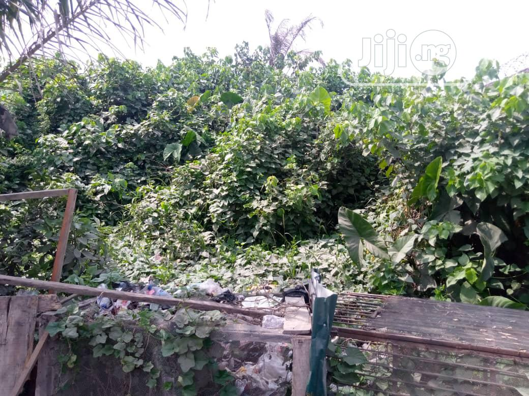 Land Facing Lekki Express Way (Fantastic Location) | Commercial Property For Sale for sale in Lekki Expressway, Lekki, Nigeria