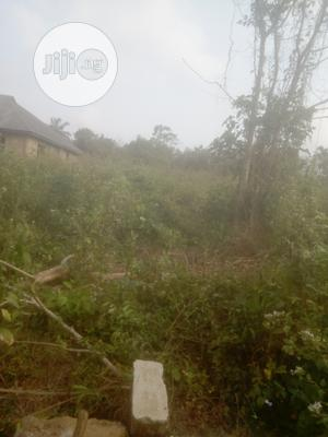 The Property Is a Plot of Land 50 /100 With Genuine Documen | Land & Plots For Sale for sale in Oyo State, Ibadan