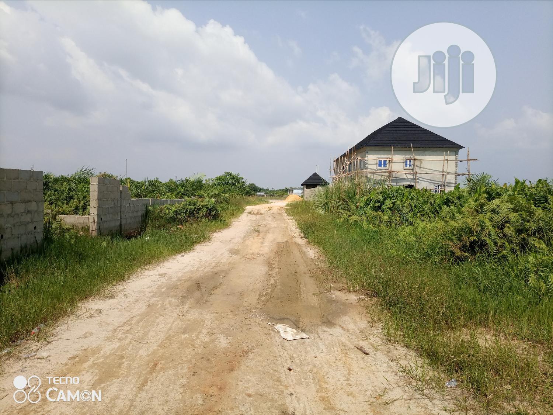 Archive: 5 Plot of Virgin Land