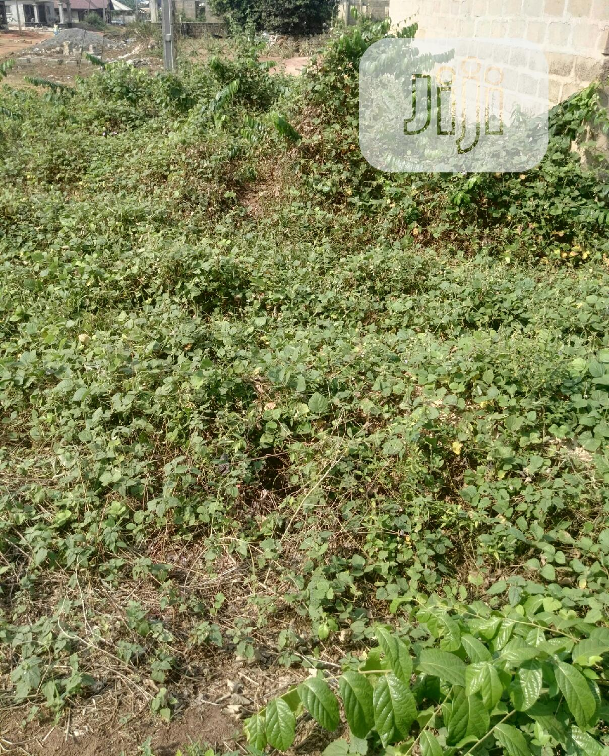 Archive: 50ft by 200ft at Old Benin Sapela Road Ohka for Sell